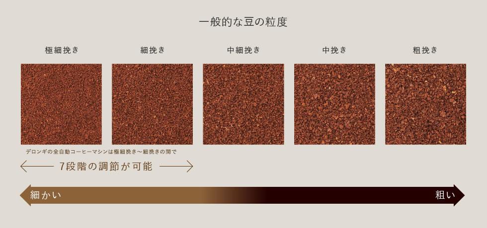 一般的な豆の粒度